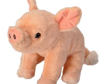 CK MINI PIG BABY -0