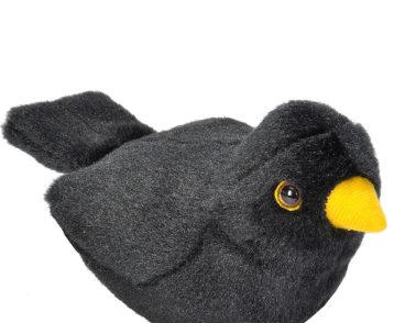 RSPB II EUROPEAN BLACKBIRD -0
