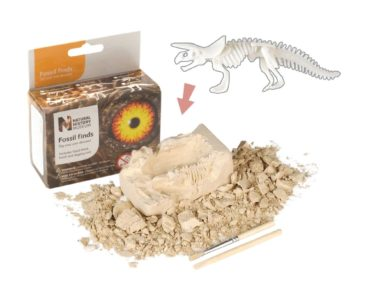 NHM FOSSIL FIND TRICERATOPS-0