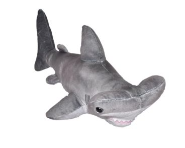 LIVING OCEAN MINI HAMMERHEAD SHARK 30-40cm-0
